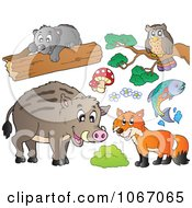 Clipart Forest Animals 1 Royalty Free Vector Illustration by visekart