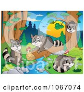 Clipart Raccoons Playing By A Stream 2 Royalty Free Vector Illustration by visekart