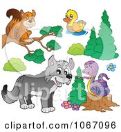 Forest Animals 2
