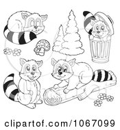 Clipart Outlined Mischievous Raccoons Royalty Free Vector Illustration by visekart