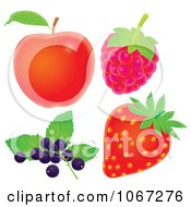 Clipart Red Apple Raspberry Strawberry And Blueberries Royalty Free Illustration