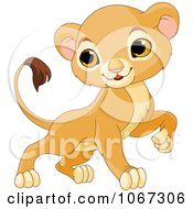 Clipart Brave Baby Lion Royalty Free Vector Illustration by Pushkin