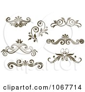 Brown Ornate Scroll Designs 2