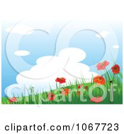 Red Poppy And Hillside Background