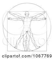 Clipart Sketched Vitruvian Man Royalty Free Vector Illustration