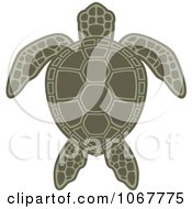 Clipart Green Sea Turtle Royalty Free Vector Illustration by John Schwegel #COLLC1067775-0127