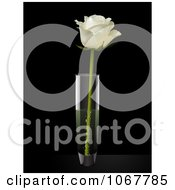 Clipart White Rose In A Vase Royalty Free Vector Illustration