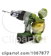 3d Tortoise With An Electric Drill