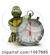 Clipart 3d Tortoise With A Stop Watch Royalty Free CGI Illustration