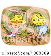 Clipart Farmers Picking Food In A Garden Royalty Free Vector Illustration
