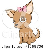 Clipart Female Chihuahua With A Bow Royalty Free Vector Illustration