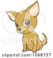 Clipart Chihuahua Sitting Royalty Free Vector Illustration by Rosie Piter