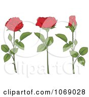 Clipart Red Roses And Stems Royalty Free Vector Illustration
