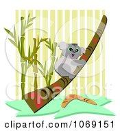 Clipart Koala Climbing A Didgeridoo Royalty Free Vector Illustration by bpearth