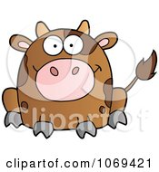 Sitting Brown Cow