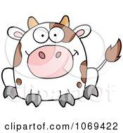 Sitting Cow