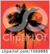 Clipart Red Sunset And Silhouetted Palm Trees Royalty Free Vector Illustration by Arena Creative