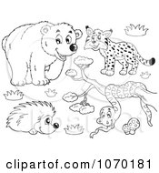 Clipart Outlined Bear Bobcat Hedgehog And Snake Royalty Free Vector Illustration by visekart