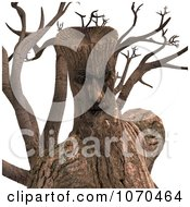 Clipart 3d Ent Tree Face 1 Royalty Free CGI Illustration