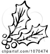 Clipart Black And White Holly Royalty Free Vector Illustration