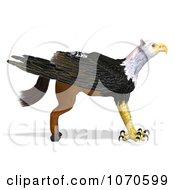 3d Griffin Creature 21