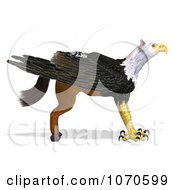 Clipart 3d Griffin Creature 21 Royalty Free CGI Illustration