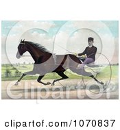 Illustration Of A Horse Champion Pacer Johnston By Bashaw Golddust Raced By Peter V Johnston Royalty Free Historical Clip Art by JVPD