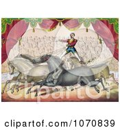 Illustration Of An Audience Watching A Man Standing On The Back Of Two Horses Controlling Them With The Reins Royalty Free Historical Clip Art by JVPD