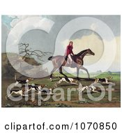 Illustration Of A Man Captain Ricketts On Horseback Fox Hunting With Dogs Royalty Free Historical Clip Art