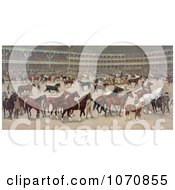 Illustration Of A Parade Of Beautiful Horses At A National Horse Show Royalty Free Historical Clip Art