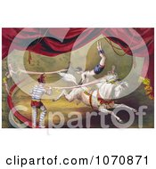 Illustration Of A Circus Acrobat Doing A Hand Stand On A Horse Royalty Free Historical Clip Art by JVPD #COLLC1070871-0002
