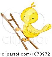 Clipart Bird Climbing A Ladder Royalty Free Vector Illustration by BNP Design Studio
