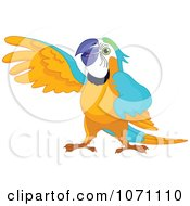 Clipart Presenting Macaw Parrot Holding Up His Wing Royalty Free Vector Illustration by Pushkin