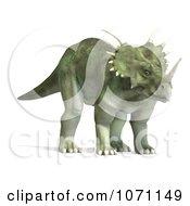 Clipart 3d Prehistoric Ceratopsian Styracosaurus Dinosaur 9 Royalty Free CGI Illustration