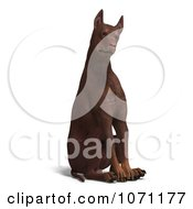 Clipart 3d Red Doberman Pinscher Dog Sitting With His Head Cocked Royalty Free CGI Illustration