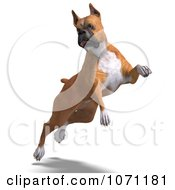 Clipart 3d Fawn And White Boxer Dog Jumping Royalty Free CGI Illustration