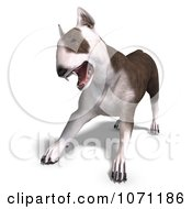 Clipart 3d Bull Terrier Dog Attacking Royalty Free CGI Illustration