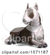 Clipart 3d Bull Terrier Dog Sitting Royalty Free CGI Illustration