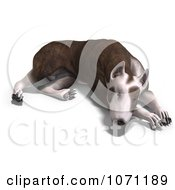 Clipart 3d Bull Terrier Dog Resting Royalty Free CGI Illustration