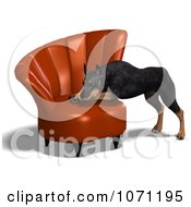Clipart 3d Black Doberman Pinscher Dog Resting His Head On A Chair Royalty Free CGI Illustration