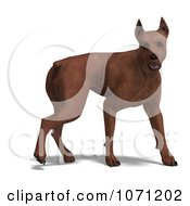 Clipart 3d Miniature Pinscher Dog Royalty Free CGI Illustration by Ralf61