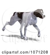 Clipart 3d German Shorthaired Pointer Dog Trotting Royalty Free CGI Illustration by Ralf61