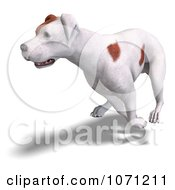 Clipart 3d Parson Russel Terrier Dog Running Royalty Free CGI Illustration by Ralf61
