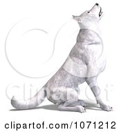 Clipart 3d White Wolf Hybrid Dog Sitting Royalty Free CGI Illustration by Ralf61