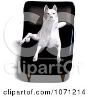 Clipart 3d White Wolf Hybrid Dog Resting On A Leather Chair Royalty Free CGI Illustration by Ralf61