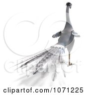 Clipart 3d White Peacock 5 Royalty Free CGI Illustration by Ralf61