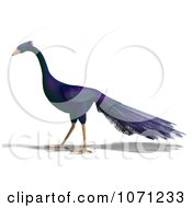 3d Purple Peacock 6