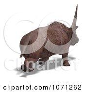 3d Prehistoric Elasmotherium Steppe Rhiniceros Dinosaur 7