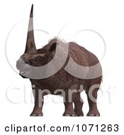 3d Prehistoric Elasmotherium Steppe Rhiniceros Dinosaur 6