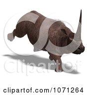 3d Prehistoric Elasmotherium Steppe Rhiniceros Dinosaur 5